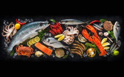 Plodovi mora: Gastro užitak