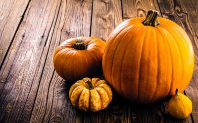 Najbolji okusi jeseni